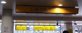 RIMG1395.JPG